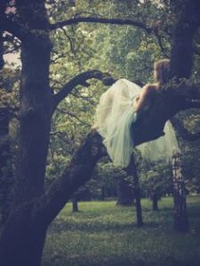 Girl in a tree photo