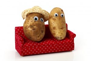 Pick up French fries and have a couch potato day