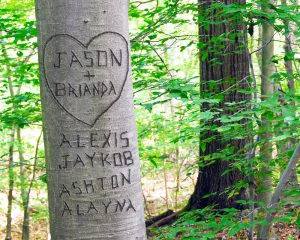 Take him on a hike and carve your names somewhere in nature