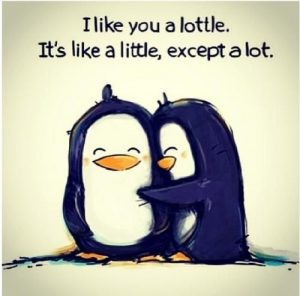 I like you a lottle. Its like a little, except a lot.