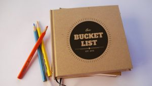 29bucket list book