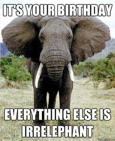 Sweet elephant birthday wish
