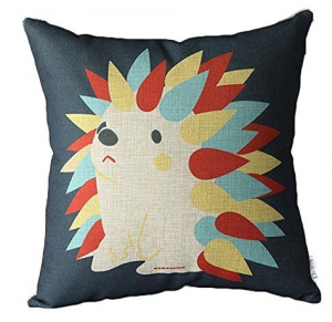 A Funky Cushion