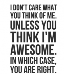 50 I Don't Care Quotes 33