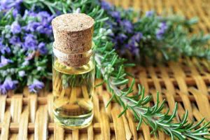 rosemary oil for acne