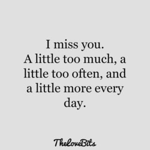 i miss you too much quote