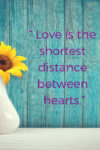 love is the shortest