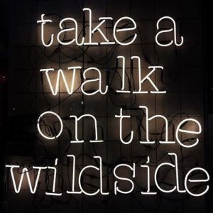 Wildside Party Quotes