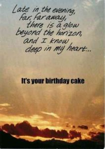 Birthday Cake Funny Quote