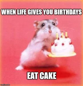 Life Funny Birthday Quotes