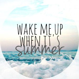Summer Is Here Quotes
