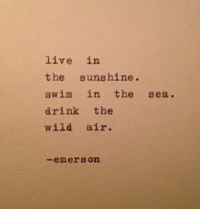 Sunny Summer Quotes