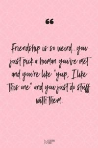 Weird Funny Friendship Quotes