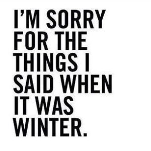 Winter Summer Quotes