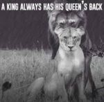 Animal-King-and-Queen-Quotes