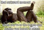 Awkward Vacation Quotes
