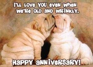 Classic-Funny-Anniversary-Quotes