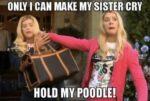 Great-Sister-Memes-Funny