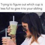 Humorous-Sibling-Memes