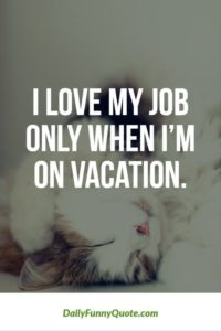 Love Vacation Quotes