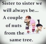 Nutty-Sister-Quotes