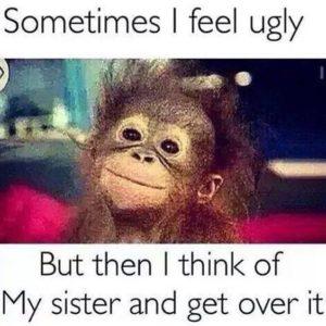 Ugly-Sister-Memes