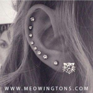 Different-ear-piercing-ideas