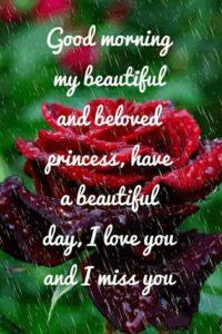 Wonderful-Good-Morning-Love-Quotes