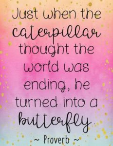 butterfly inspirational graduation quote