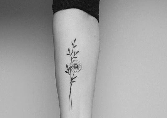 delicate-daisy-flower-tattoo
