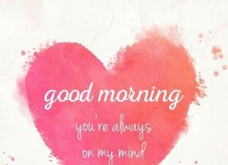 Good Morning Love Quotes for Him and Her