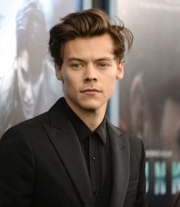 Harry Styles hot